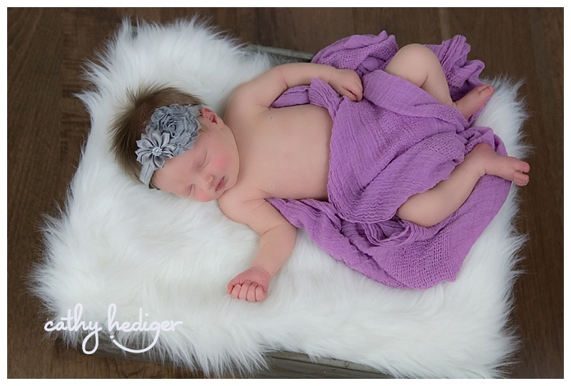 Newborn baby photography Loveland Colorado