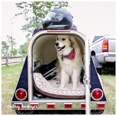 This dog has his own trailer